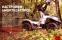 Комплект стойки и пружины подвески в сборе SS20 Tour Комфорт для квадроциклов Baltmotors Jumbo 700 (4шт)(32210/42126-max-00) 10