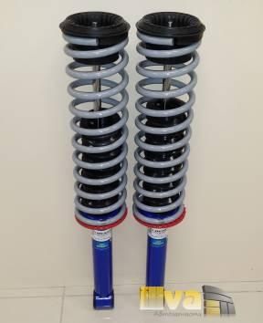 Задние амортизаторы в сборе Демфи газомаслянные с пружинами ВАЗ, на ВАЗ 2111 и 2170 универсал, 2шт